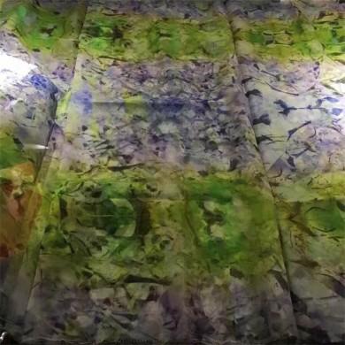 digital print ed silk dress fabric organza