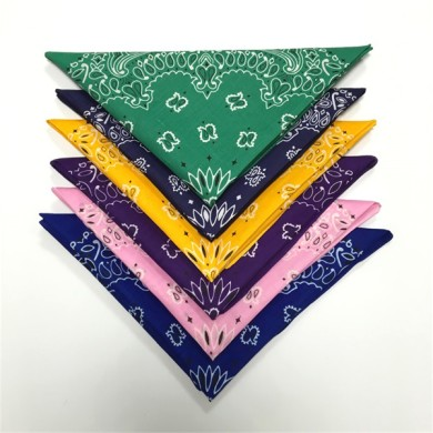 cowboy headwear bandana (2)