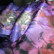 Sheer Crisp Silk Fabric Digital Printed